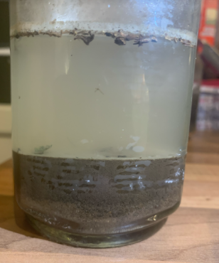 Ellie S Yr 3 Soil Investigation